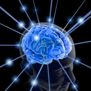 brainsfullpotential1